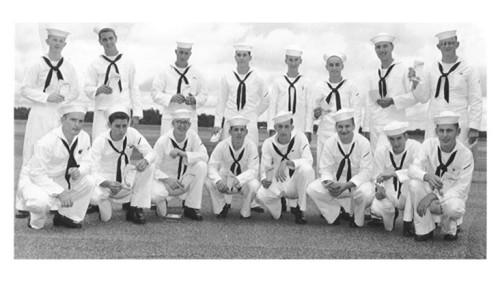 Dun in Navy